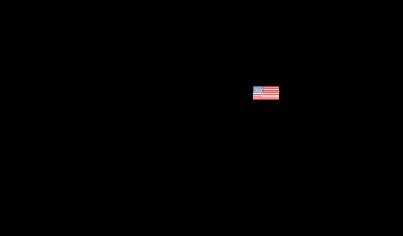Sireg-usa Logo